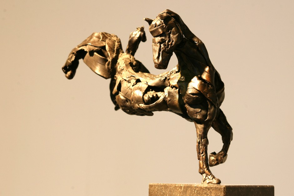 Dartel Paard